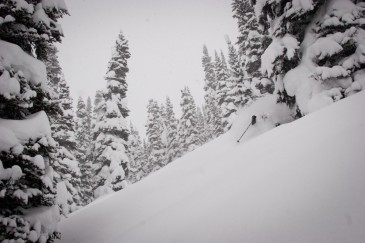 Whistler Avalanche courses can keep you safe in the backcountry. photo: Derek Vanderkooy