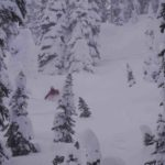 Monashee Tree Skiing in Deep powder