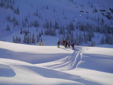 photo for Ski Guiding Whistler