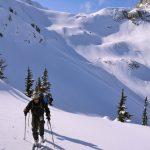 Ski Touring near Whistler