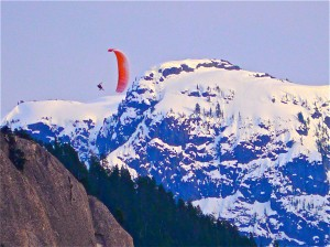 Paraglide from the Chief