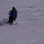 Skiing Alopha