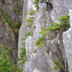Angel's Crest - Mid route