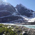 Alpine Flowers Lake Osea BC