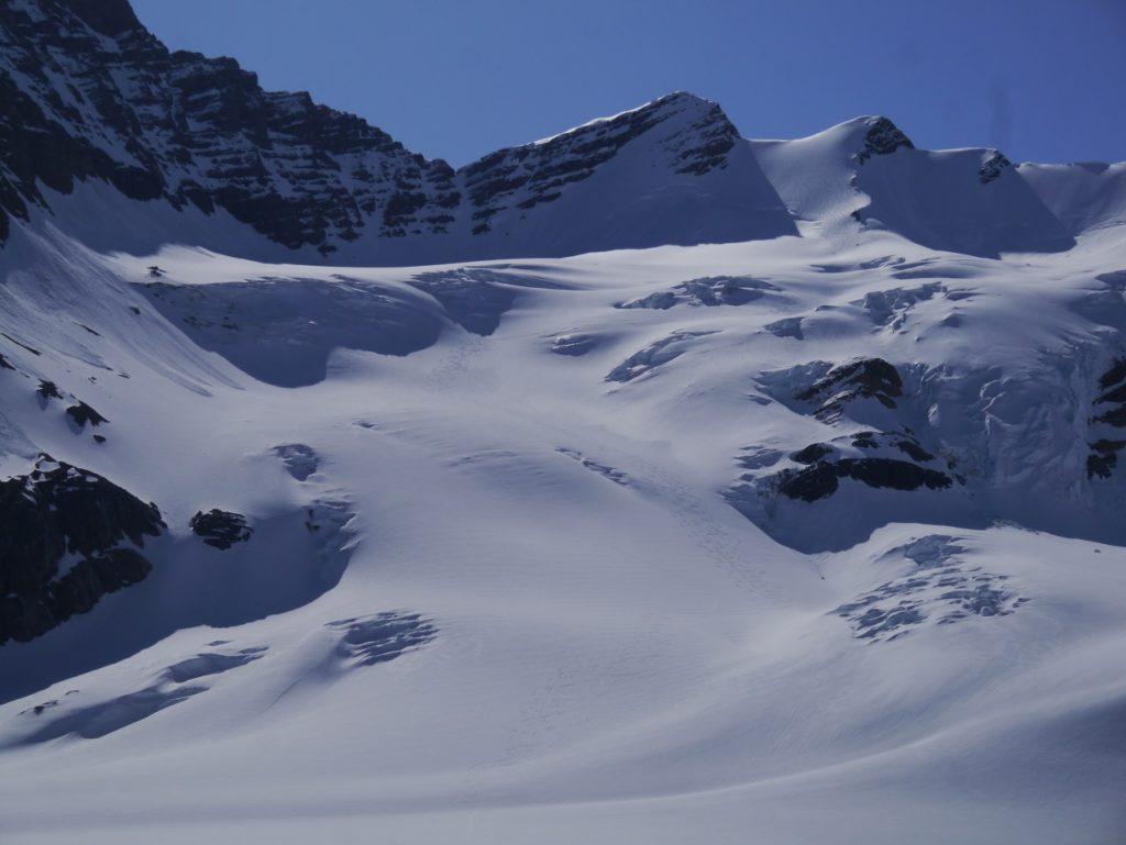 Ski Tracks on Tusk Glacier Altus Mt. Guides